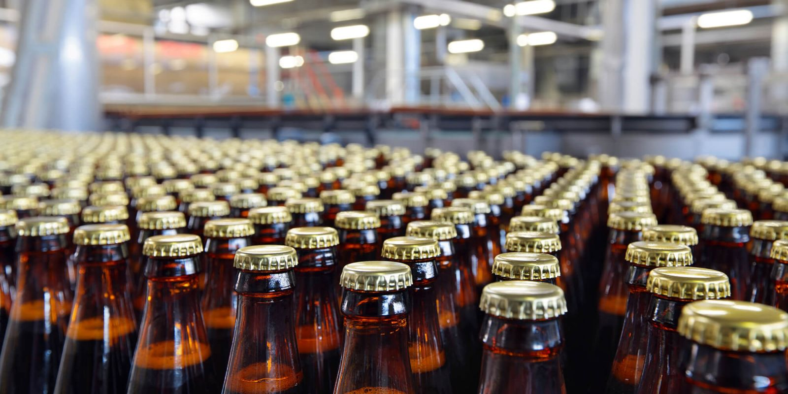Factory processing and bottling